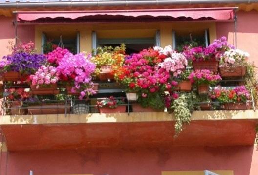 Dekorasyonlar Çiçeklerle Anlam Kazanıyor