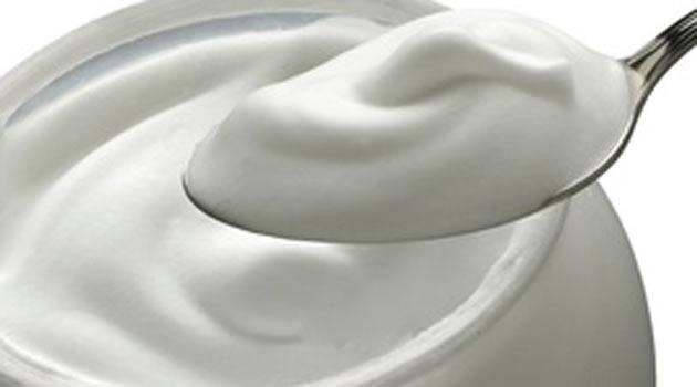yoğurtun faydaları