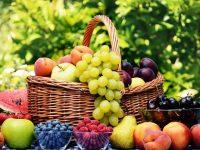 Hem Doğa Hem İnsan İçin Organik Meyve