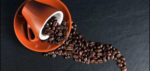 En Çok Kahve Üreten Ülkeler